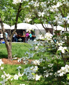 artist market at Atlanta Dogwood Festival