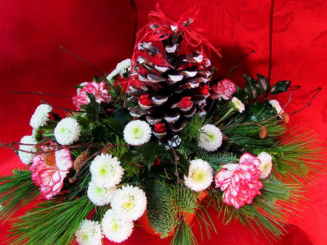 Virginia Beach Christmas decorator